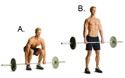 8 Reasons You Should Be Doing Deadlifts Evolve Fitness Coaching